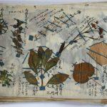 本草標本-1624d