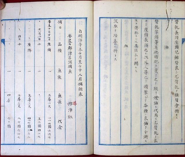 03-120 土佐国捕鯨説02 in 臥遊堂沽価書目「所好」三号