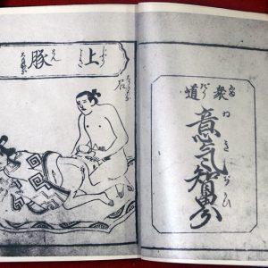 03-154 好色訓蒙図彙 コピー01 in 臥遊堂沽価書目「所好」三号