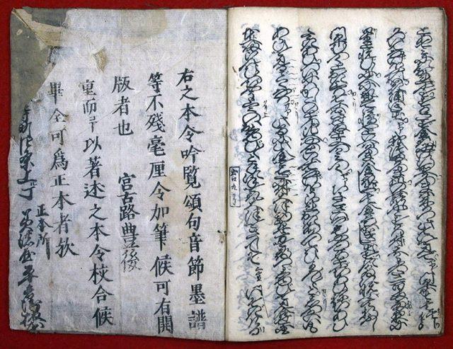 傾城出口柳(01-156/25505)
