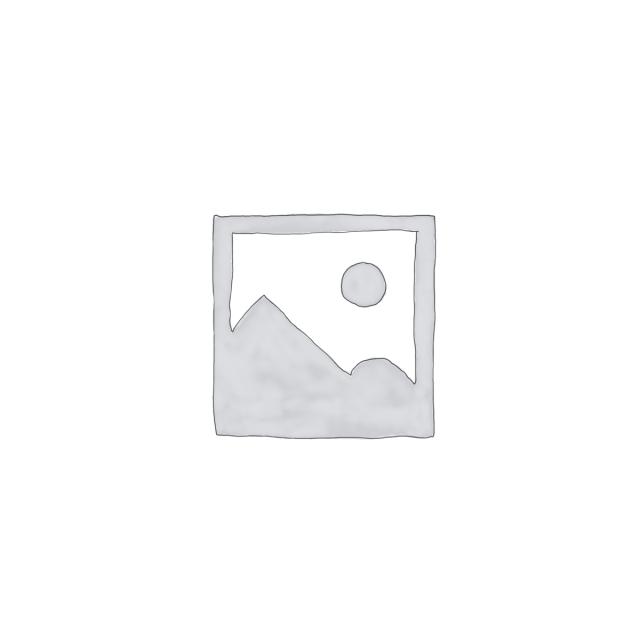 威遠譚筆・英国都府衆議(01-246/22428)